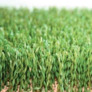 искусственная трава DOMO CHAMPION S PRO